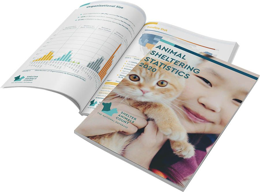 COVID 19 Impact on Shelter Animals for 2020