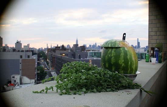 Watermelon_on_Roof