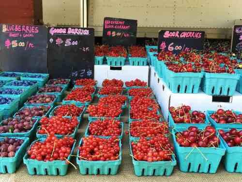 Greenmarket Red Jacket_greenpoint_swallace