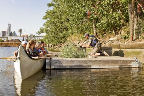 Working and Learning on the Living Dock. Via Newtown Creek Alliance