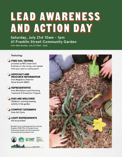 Lead awareness and action day flyer