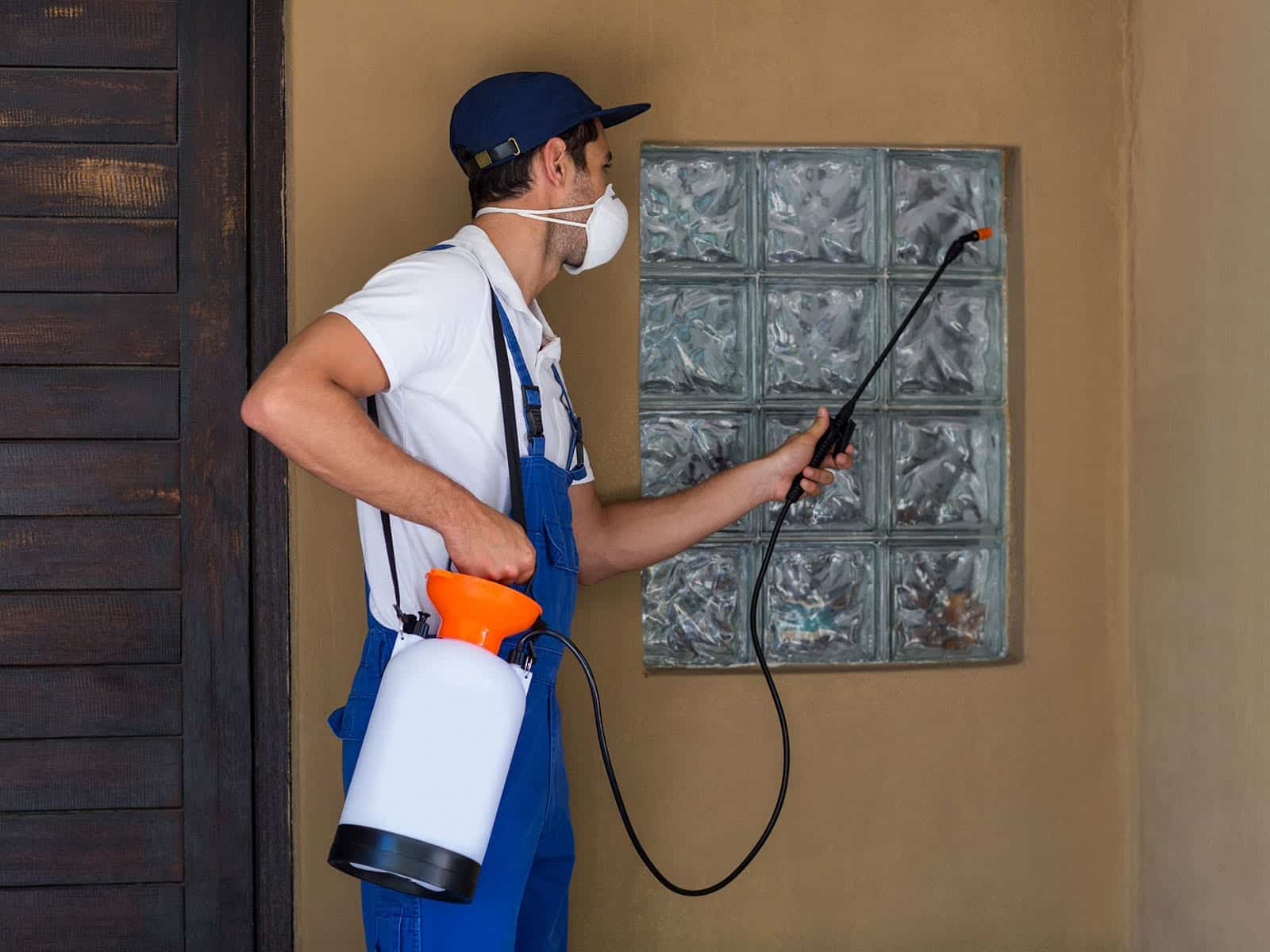 GreenPro Outdoor Pest Control - Spraying the House