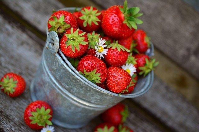 Bucket of Strawberries
