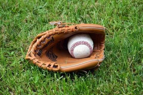 Baseball Mitt and Ball in Grass