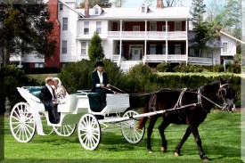 Carriage Ride Following Ceremony
