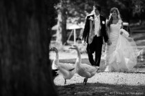 20120922_Green_River_Plantation_Wedding_33006