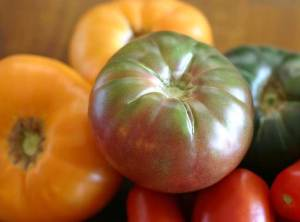 Fresh Heirloom Tomato Sauce