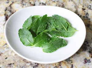 peppermint leaves for vegan matcha mint chip smoothie