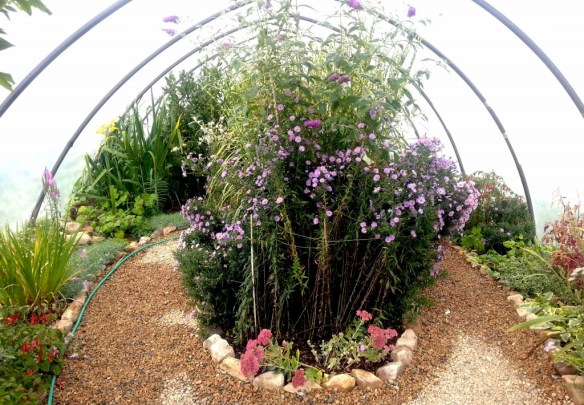 Organic Ornamental Polytunnel