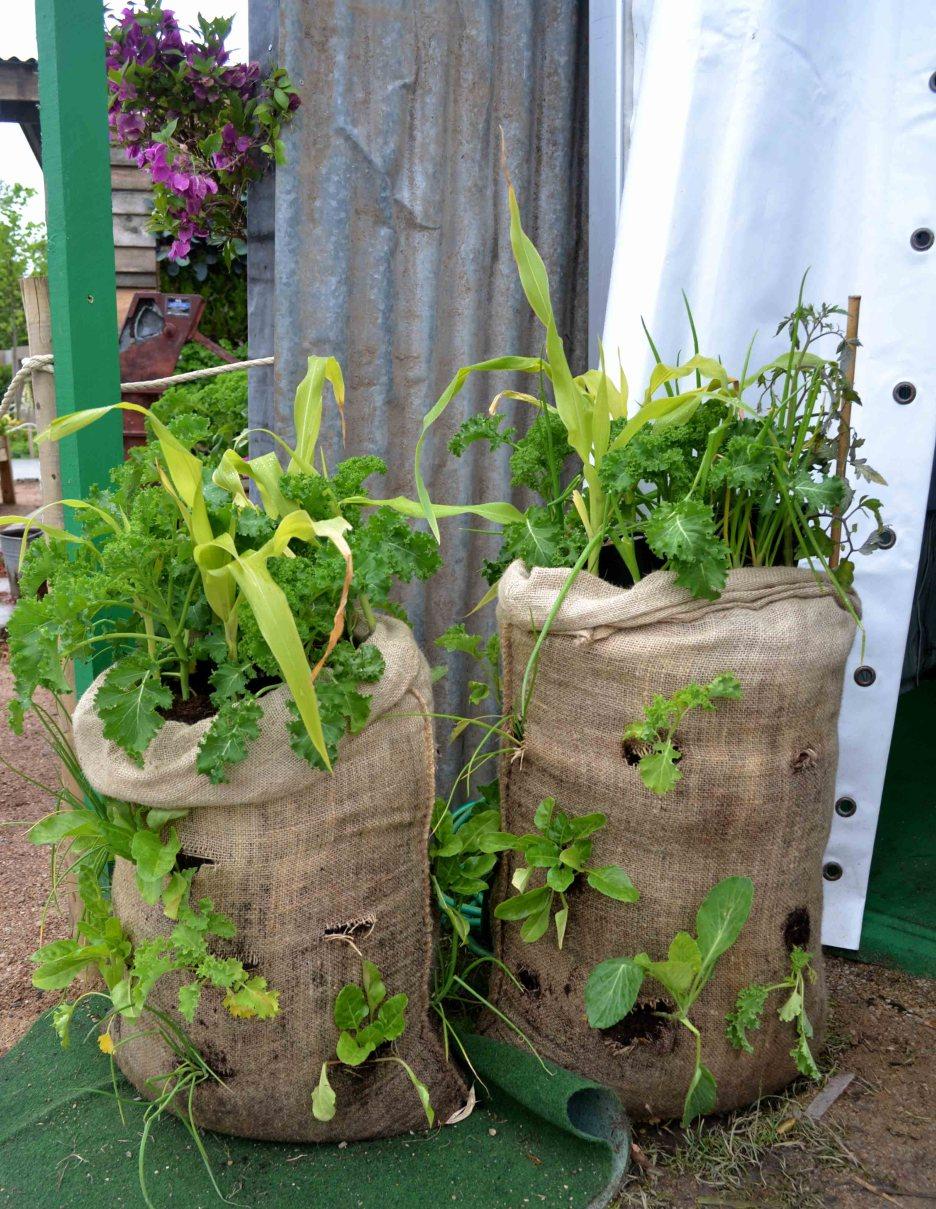 GOAL potato sacks at Bloom
