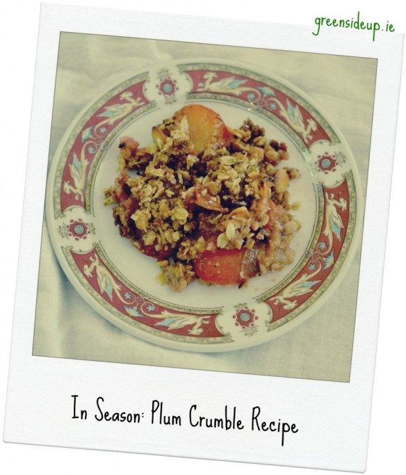 Plum Crumble Recipe