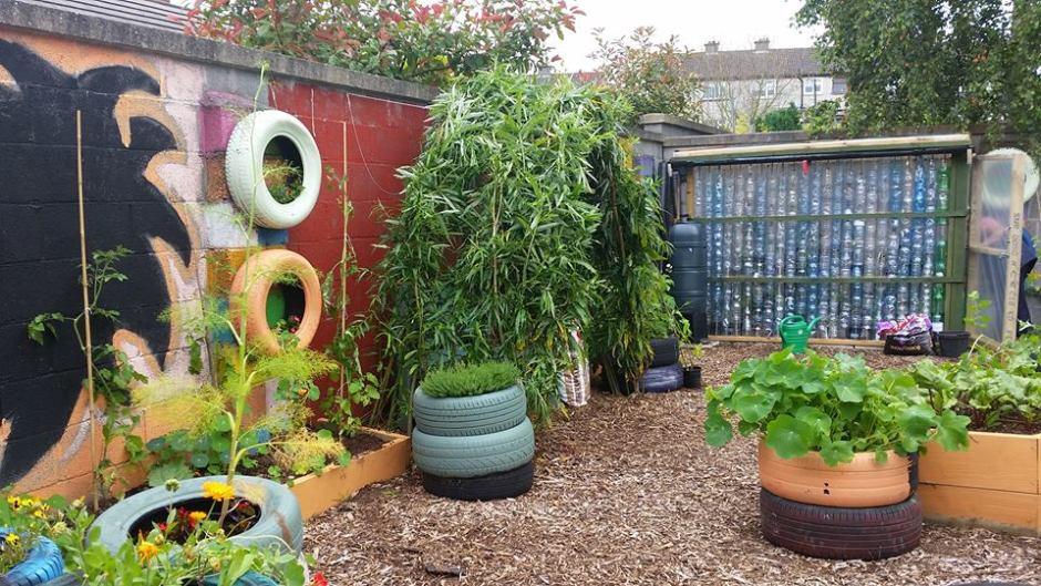Building a Plastic Bottle Greenhouse