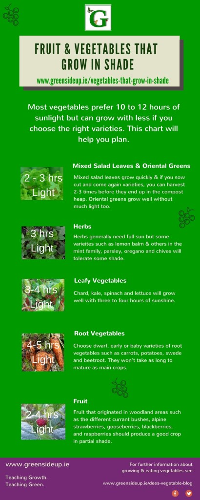 Fruit and Vegetables that Grow in Shade