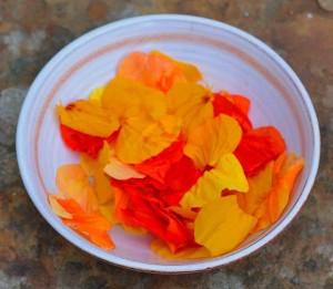 5 Uses for Nasturtiums