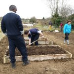Building raised beds in Kilkenny Allotments & Community Gardens