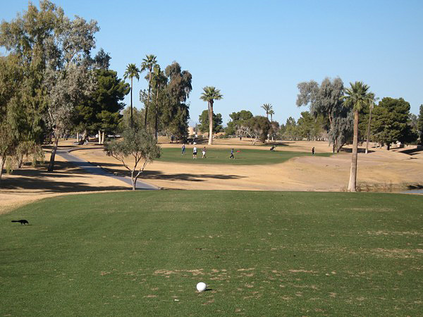 Ken McDonald Golf Course Tempe Arizona. Hole 8, Par 3.