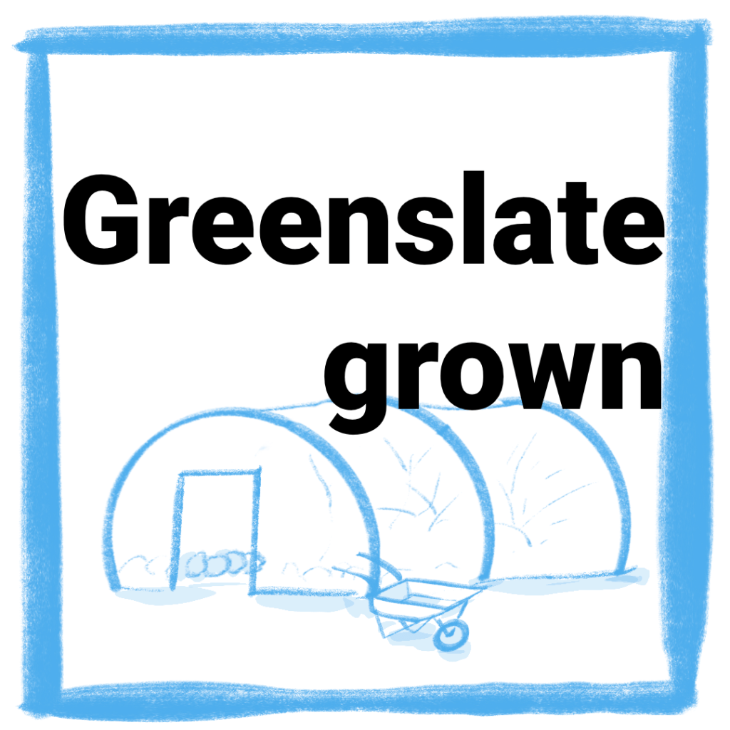 Greenslate Grown Button image