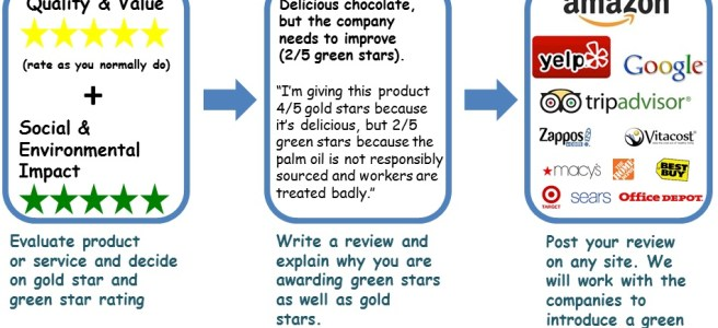 An overview of how the Green Stars Project idea works. Individuals write reviews for products or services and include a rating for social and environmental impact on a scale of 1-5 greens stars, Reviews can be posted on any stie.