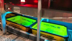 Кальяри становится первым европейским аэропортом, установившим новую систему дезинфекции поверхности UV-C