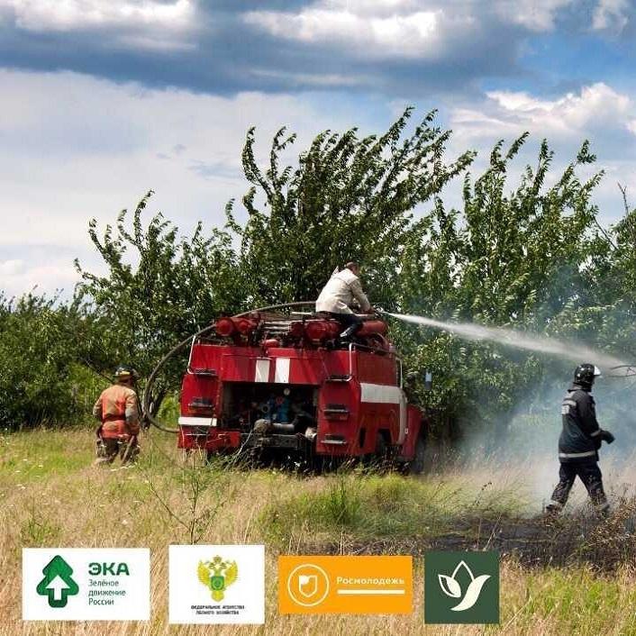 Школа лесных волонтёров. Пожаротушение