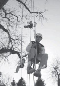 climbtrees2