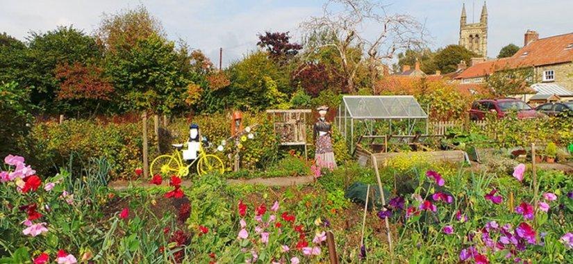 Organic gardening quick planning guide