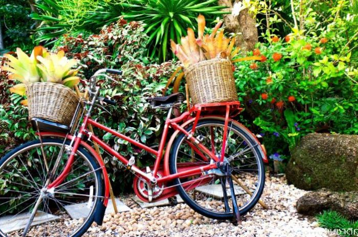 Eco-Friendly Tips For Green Fingered Gardeners