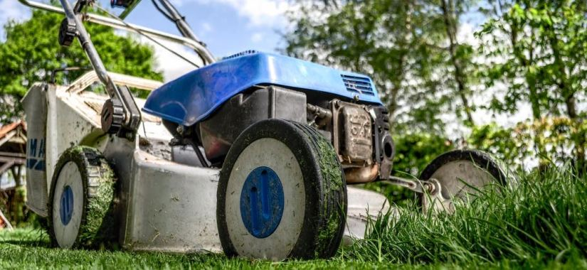 5 Essential Power Tools for Your Garden
