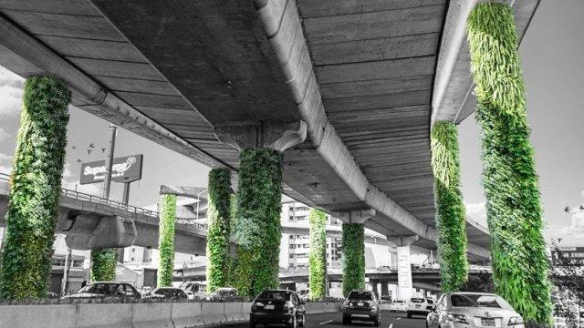 via verde projeção