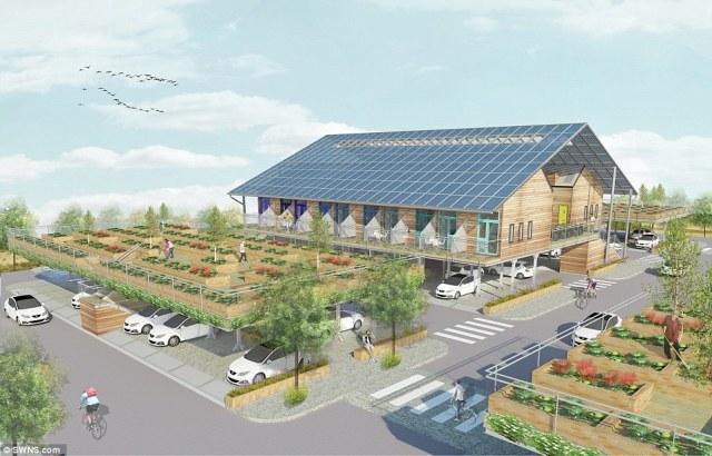 A proposta pode ir além: tornar produtiva uma área antes árida na cidade. (Fonte: Daily Mail).