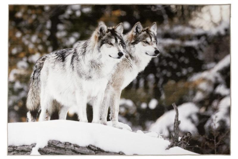 G8015-14 Loup