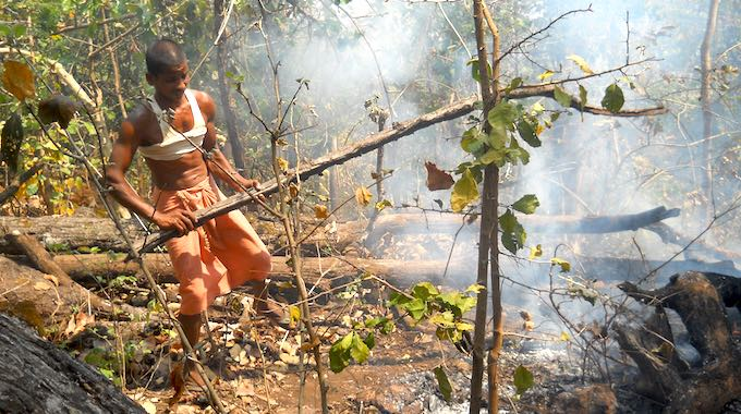 Strengthen Forest Rights for Climate Change Action: Draft Forest Policy