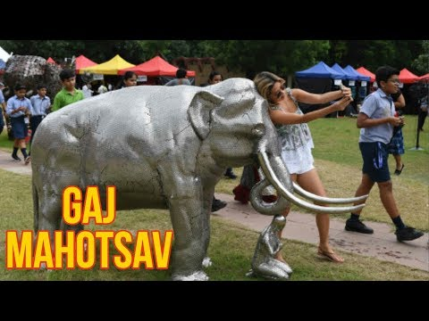 Environment Ministry's Gaj Mahotsav concludes on Independence Day