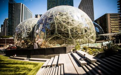 Amazon opens rainforest workplace spheres for employees in Seattle
