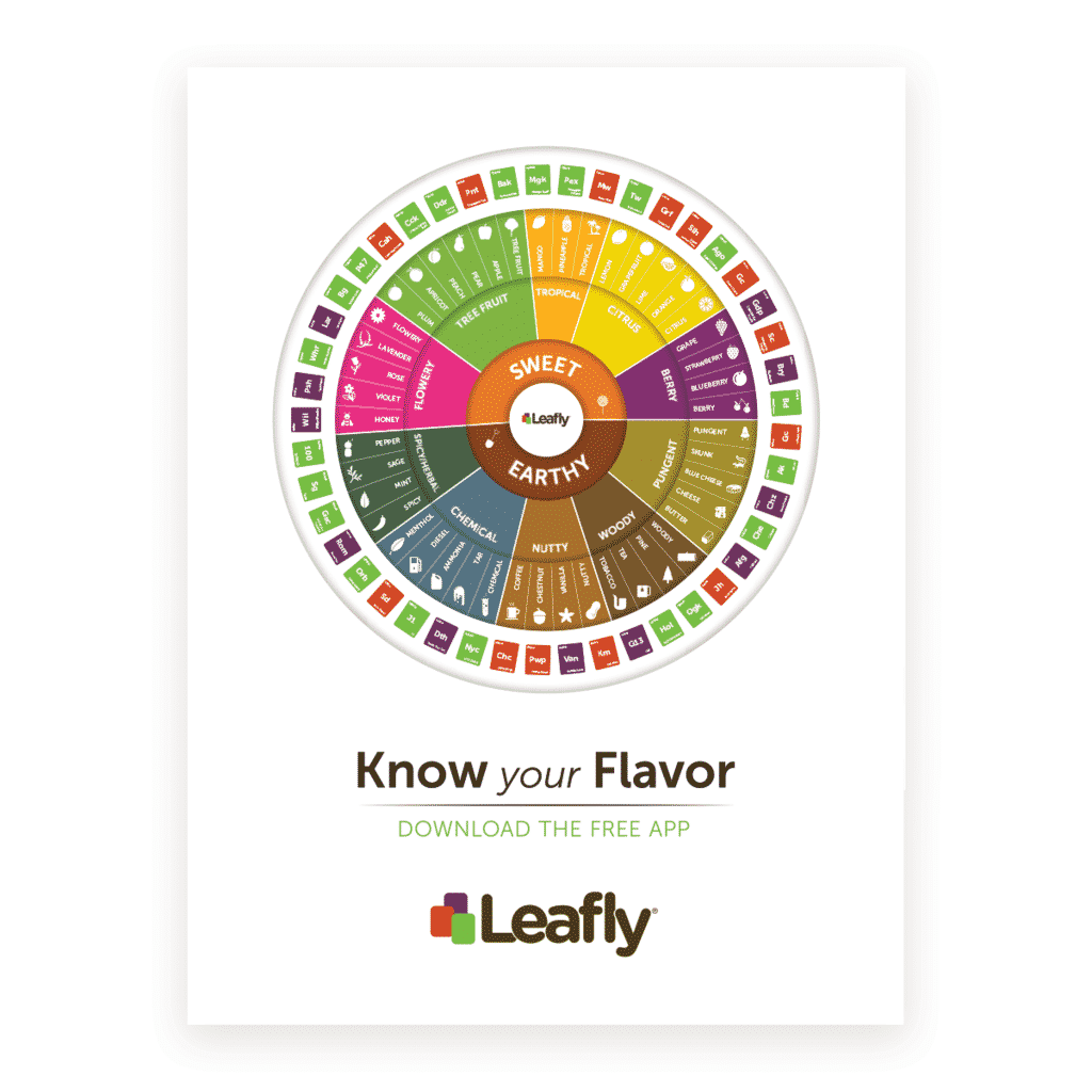 Know your Flavor Poster Leafly