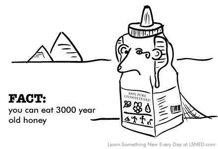 0029-egyptian-honey
