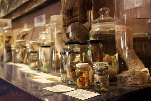 Museum 140 Jenni Fuchs