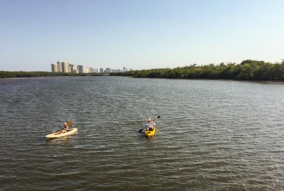 eco-tourism-in-south-florida-state-park-hohn-d-macarthur-5