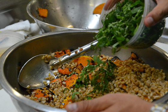 Mixing of ingredients for squash and farro salad