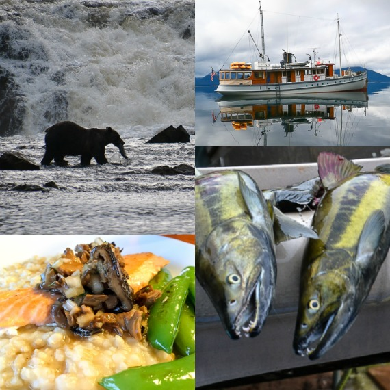 alaska_salmon_square_collage
