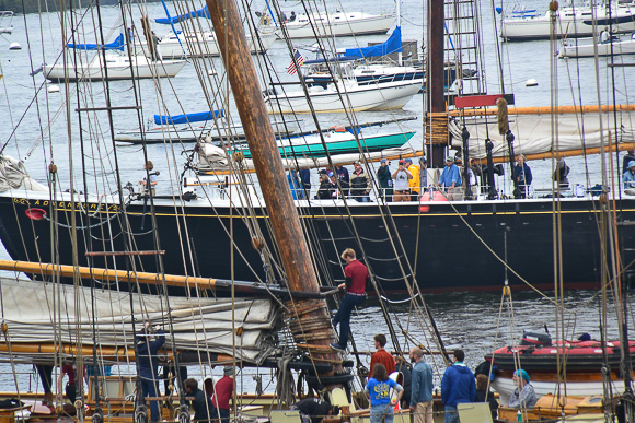 View of Boston Harbor during Tall ships