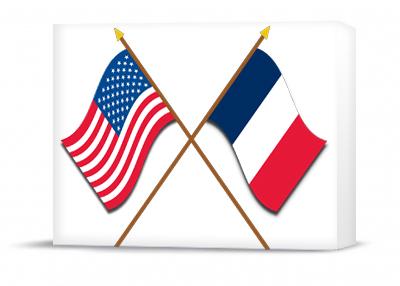 USA & France 3D