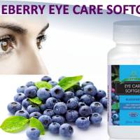 Green World Blueberry Eye Care Softgel