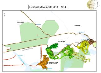 elephantmovementsbotswana2011-14