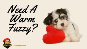 #6 Need A Warm Fuzzy.001