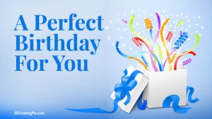 #70 A Perfect Birthday for You.001