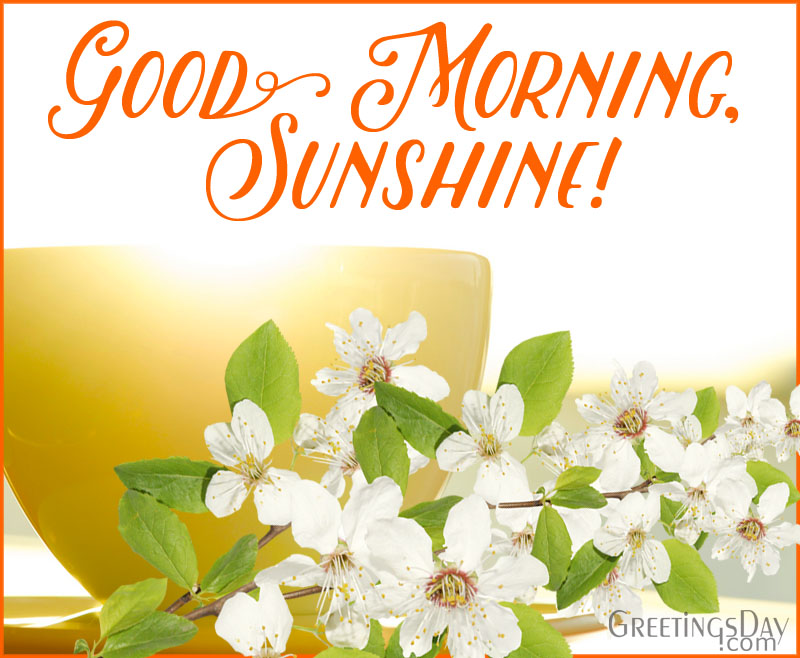 Good Morning Spring Pictures ECards Amp Greetings Wishes