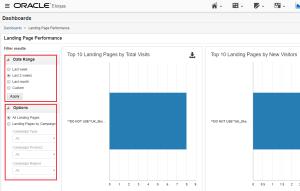 Eloqua landing page performance dashboard