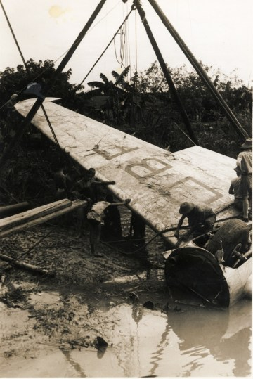 dismantling its wings