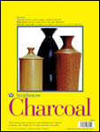 Strathmore 300 Series Charcoal P